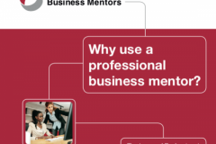 Why Use a Business Mentor