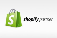 What is a Shopify Partner?
