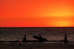 Writing Content for SEO - Red Surfboards