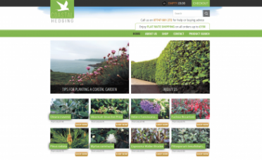 Website Design Coastal Hedging