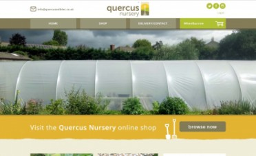 Website Design Quercus