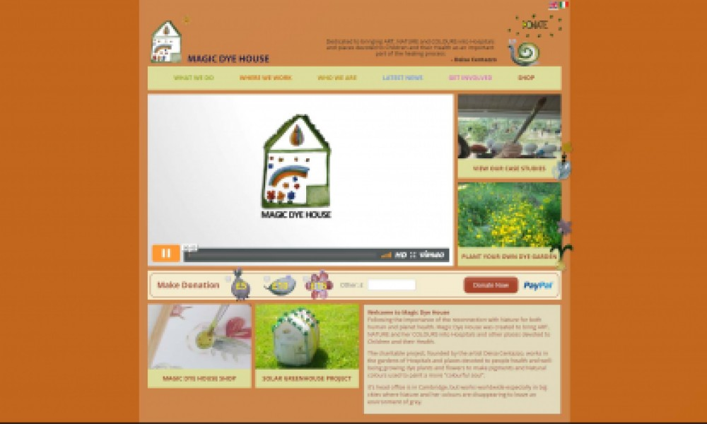 Magic Dye House Website Screenshot