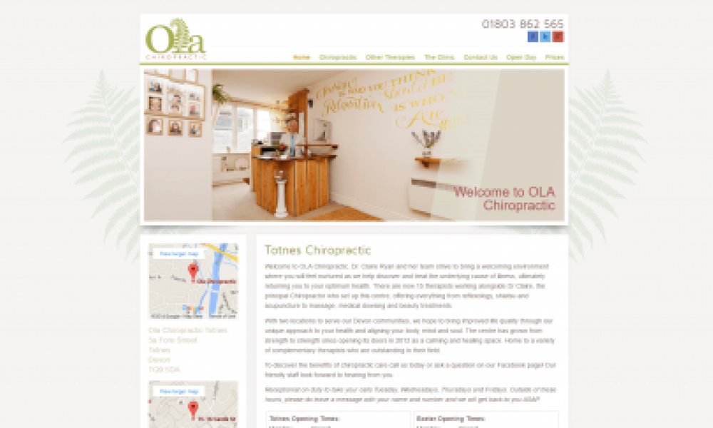Ola Chiropractic Website Design