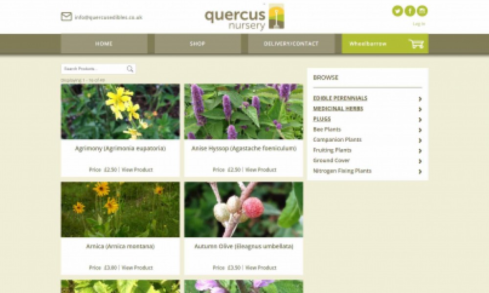 Quercus e-Commerce