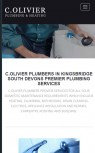 C.Olivier Responsive Website Design